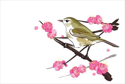 和風でリアルチックな美しい梅
