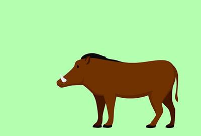 シンプル猪の無料素材3