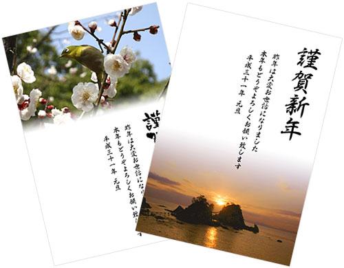 新春花色年賀状のテンプレート画像