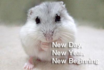 鼠の写真入り令和2年無料テンプレート1