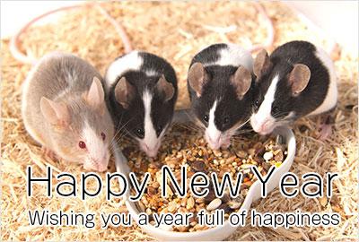 鼠の写真入り令和2年無料テンプレー4